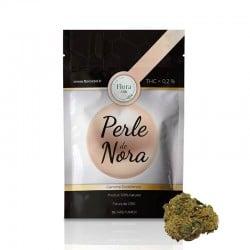 Perle De Nora - Flora pas cher