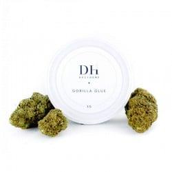 Gorilla Glue - Delihemp pas cher